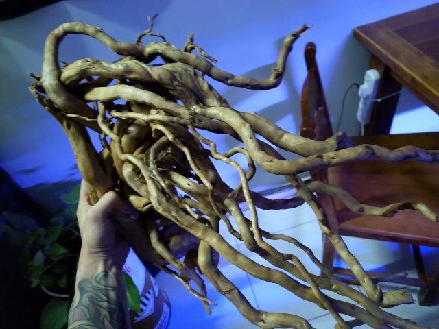 New driftwood 1.jpg