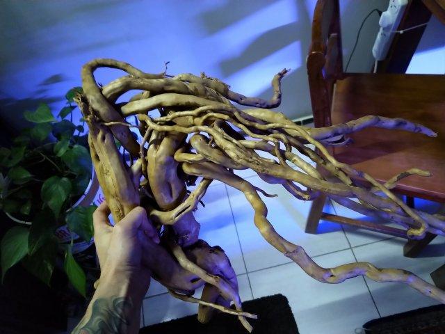new driftwood3.jpg