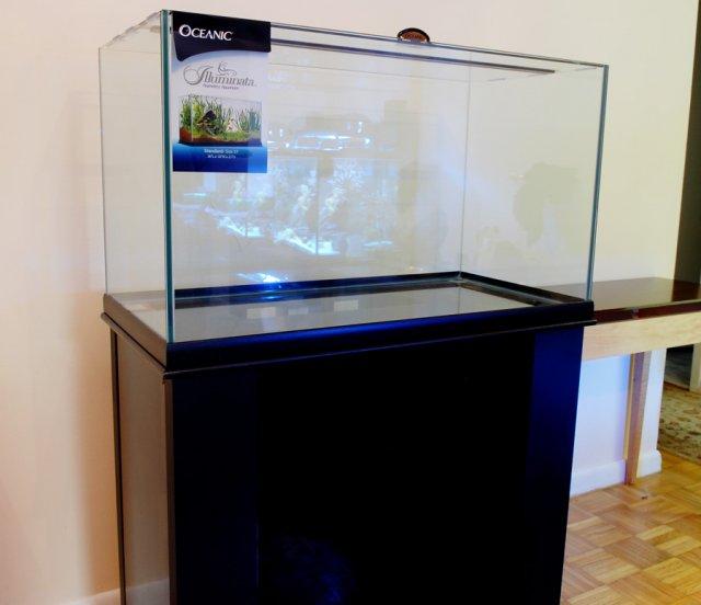 Oceanic 57 Gallon Illuminata.jpg