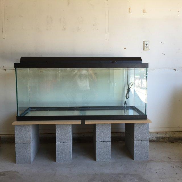 Diy 75 Gallon Tank Monsterfishkeepers Com