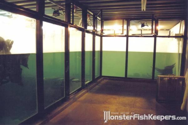Big Fish Tanks